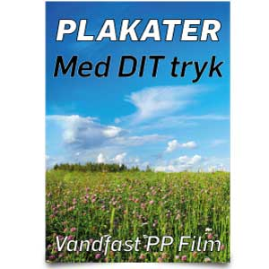 Plakater & Posters